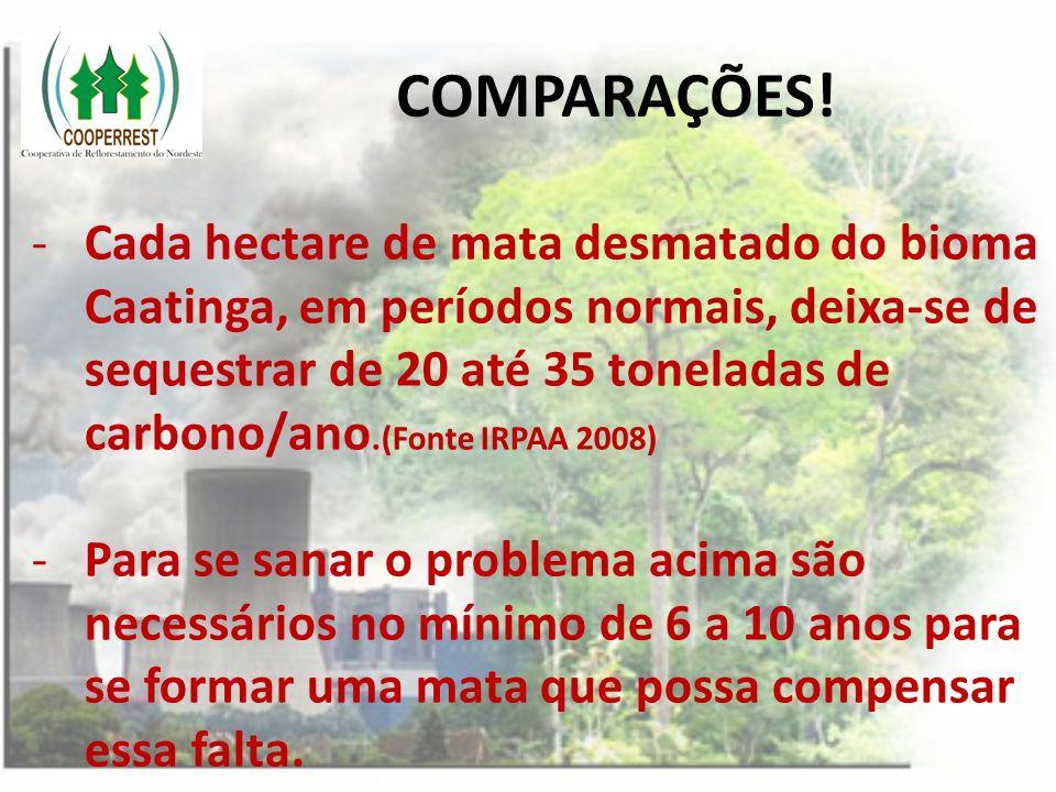 COMPARAÇÕES! -Cada hectare de mata desmatado do bioma Caatinga, em períodos normais, deixa-se de sequestrar de 20 até 35 toneladas de carbono/ano.(Fon