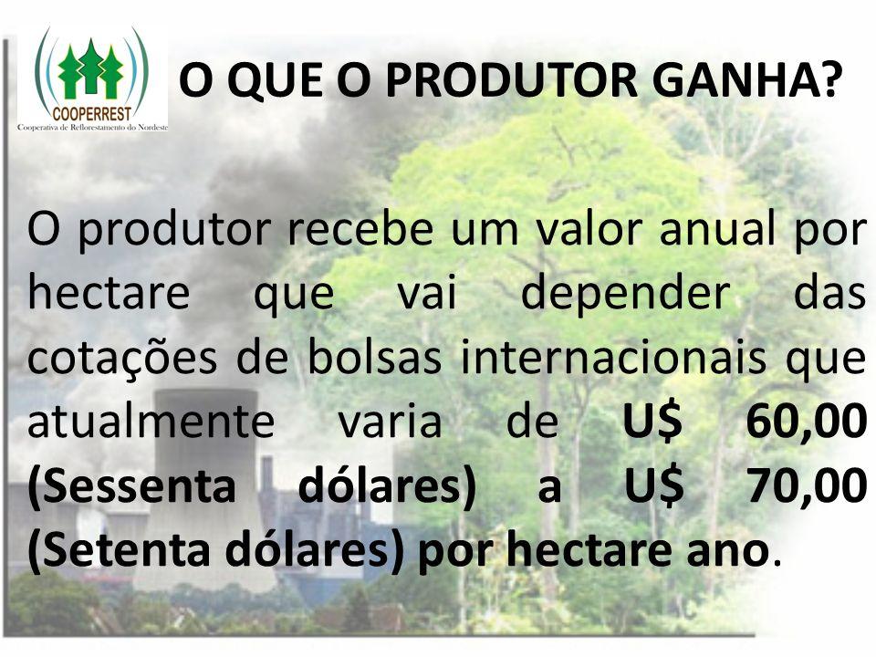 O QUE O PRODUTOR GANHA? O produtor recebe um valor anual por hectare que vai depender das cotações de bolsas internacionais que atualmente varia de U$