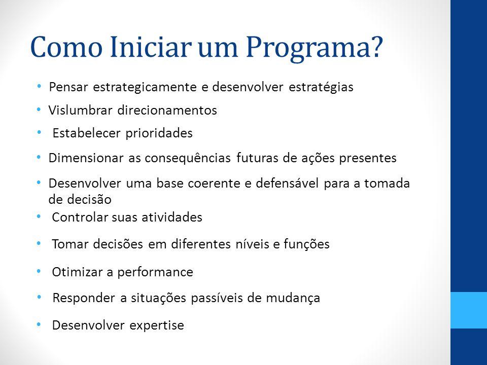 Como Iniciar um Programa? Tomar decisões em diferentes níveis e funções Pensar estrategicamente e desenvolver estratégias Vislumbrar direcionamentos E