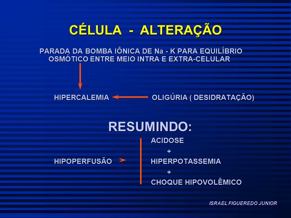 CÉLULA - ALTERAÇÃO PARADA DA BOMBA IÔNICA DE Na - K PARA EQUILÍBRIO OSMÓTICO ENTRE MEIO INTRA E EXTRA-CELULAR HIPERCALEMIA OLIGÚRIA ( DESIDRATAÇÃO) RESUMINDO: RESUMINDO: ACIDOSE ACIDOSE + HIPOPERFUSÃO HIPERPOTASSEMIA + CHOQUE HIPOVOLÊMICO CHOQUE HIPOVOLÊMICO ISRAEL FIGUEREDO JUNIOR