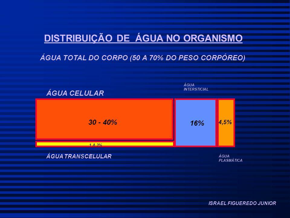 DISTRIBUIÇÃO DE ÁGUA NO ORGANISMO ÁGUA TOTAL DO CORPO (50 A 70% DO PESO CORPÓREO) 30 - 40% 1 A 3% 16% 4,5% ÁGUA CELULAR ÁGUA INTERSTICIAL ÁGUA TRANSCELULAR ÁGUA PLASMÁTICA ISRAEL FIGUEREDO JUNIOR