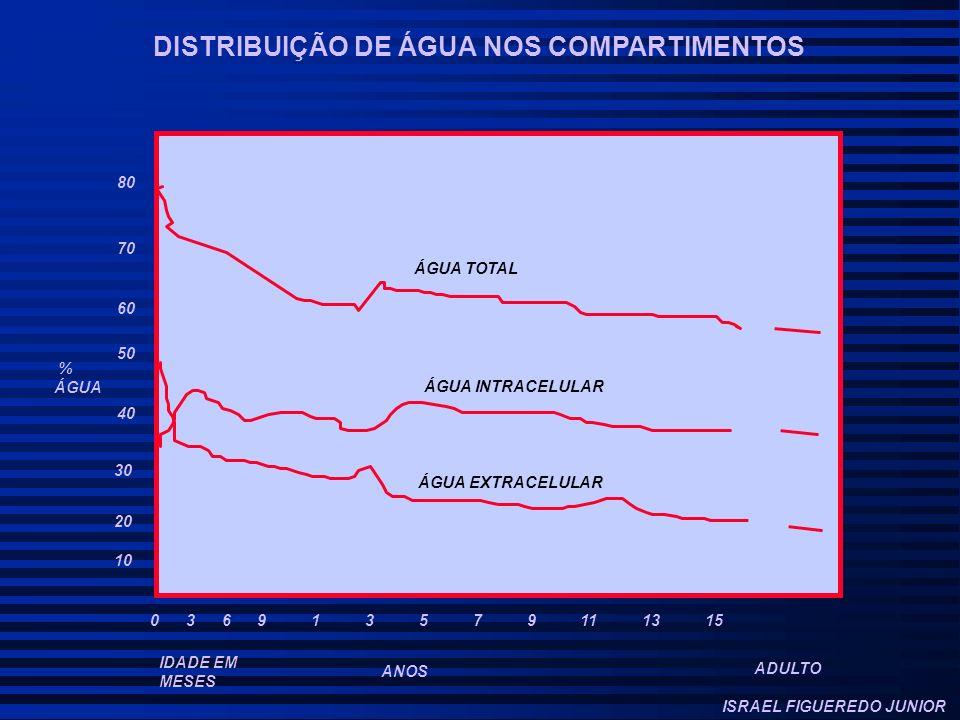 DISTRIBUIÇÃO DE ÁGUA NOS COMPARTIMENTOS 10 20 30 40 50 60 70 80 % ÁGUA 0 3 6 9 1 3 5 7 9 11 13 15 IDADE EM MESES ANOS ADULTO ÁGUA TOTAL ÁGUA INTRACELULAR ÁGUA EXTRACELULAR ISRAEL FIGUEREDO JUNIOR