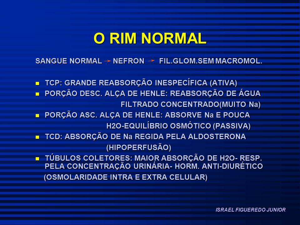 O RIM NORMAL SANGUE NORMAL NEFRON FIL.GLOM.SEM MACROMOL.