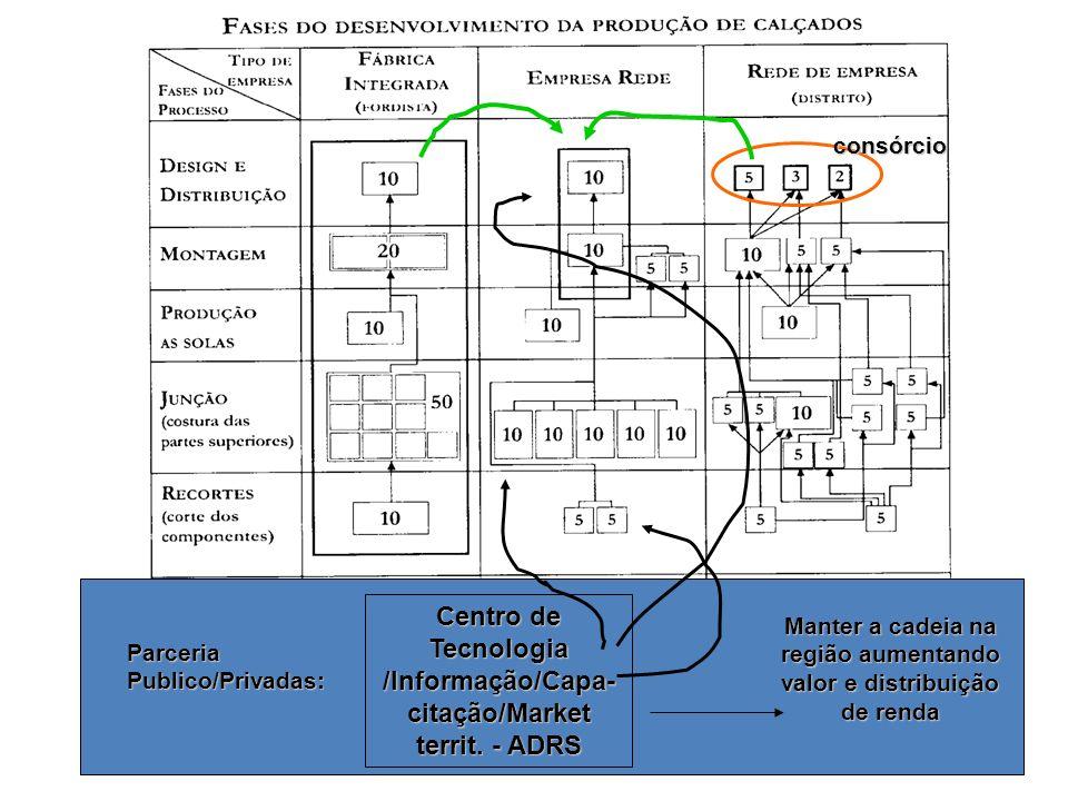 Fonte: Paolo Gurizatti consórcio Parceria Publico/Privadas: Centro de Tecnologia /Informação/Capa- citação/Market territ. - ADRS Manter a cadeia na re