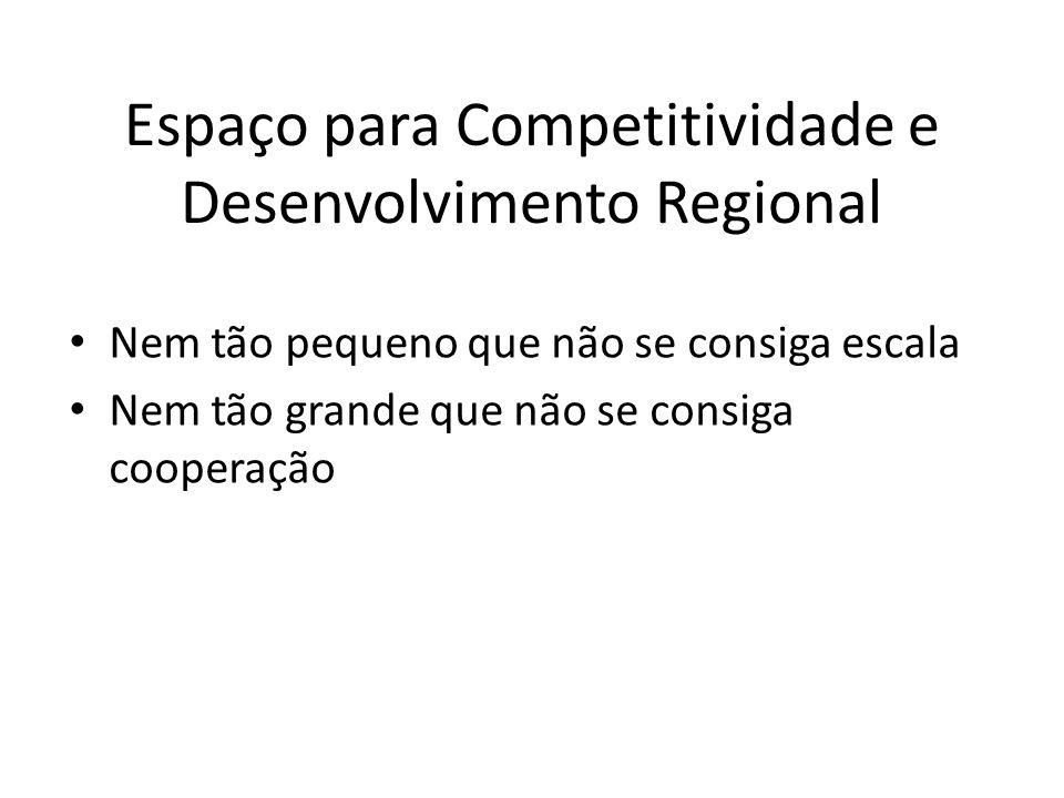Espaço para Competitividade e Desenvolvimento Regional Nem tão pequeno que não se consiga escala Nem tão grande que não se consiga cooperação