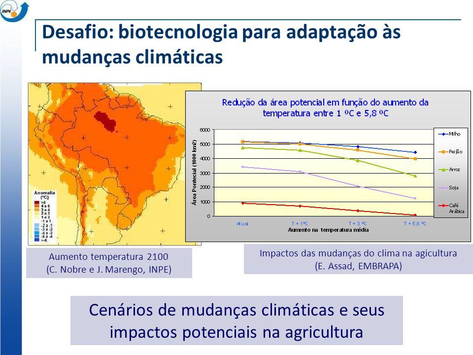 Desafio: biotecnologia para adaptação às mudanças climáticas Cenários de mudanças climáticas e seus impactos potenciais na agricultura Aumento tempera
