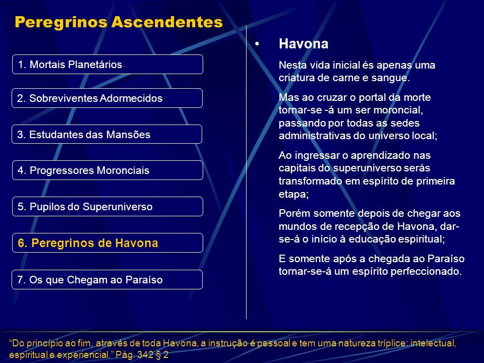 Peregrinos de Havona Do princípio ao fim, através de toda Havona, a instrução é pessoal e tem uma natureza tríplice: intelectual, espiritual e experie