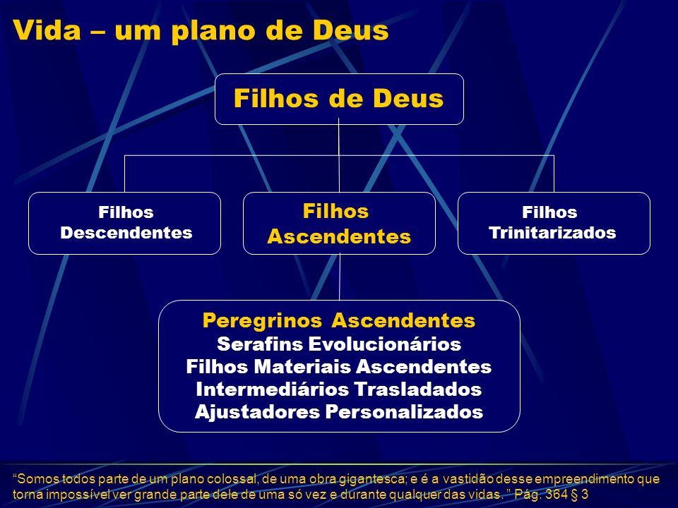 Vida – um plano de Deus Filhos de Deus Filhos Descendentes Filhos Ascendentes Filhos Trinitarizados Peregrinos Ascendentes Serafins Evolucionários Fil