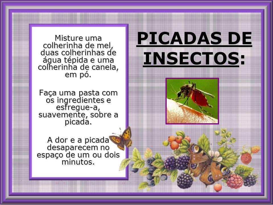 PICADAS DE INSECTOS: PICADAS DE INSECTOS: Misture uma colherinha de mel, duas colherinhas de água tépida e uma colherinha de canela, em pó.