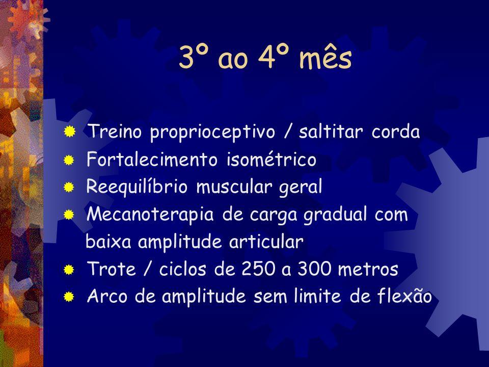 3º ao 4º mês Treino proprioceptivo / saltitar corda Fortalecimento isométrico Reequilíbrio muscular geral Mecanoterapia de carga gradual com baixa amp