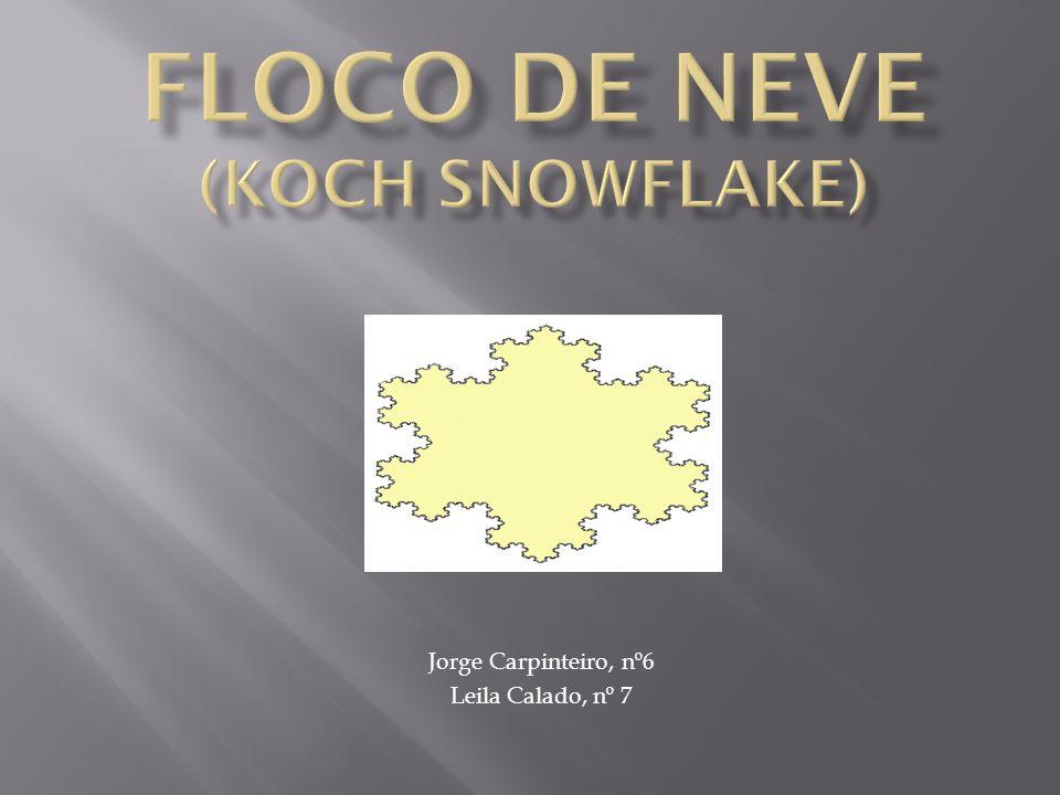 Floco de Neve de Koch Estrela de DavidTriângulo Inicial REGRA DE SUBTITUIÇÃO RECURSIVA Comece com um triângulo equilátero sólido Quando vir um segmento fronteiro substitua-o por