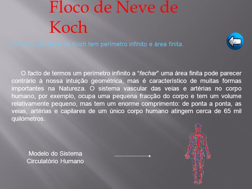 O Floco de Neve de Koch tem perímetro infinito e área finita. Floco de Neve de Koch O facto de termos um perímetro infinito a fechar uma área finita p