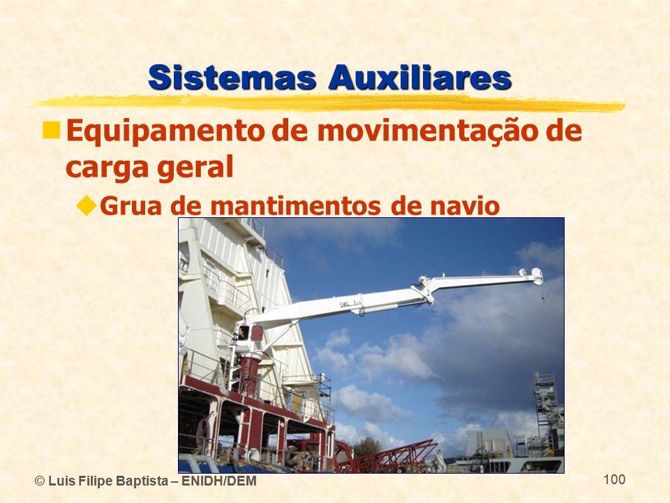 © Luis Filipe Baptista – ENIDH/DEM 100 © Luis Filipe Baptista – ENIDH/DEM 100 Sistemas Auxiliares Equipamento de movimentação de carga geral Grua de m