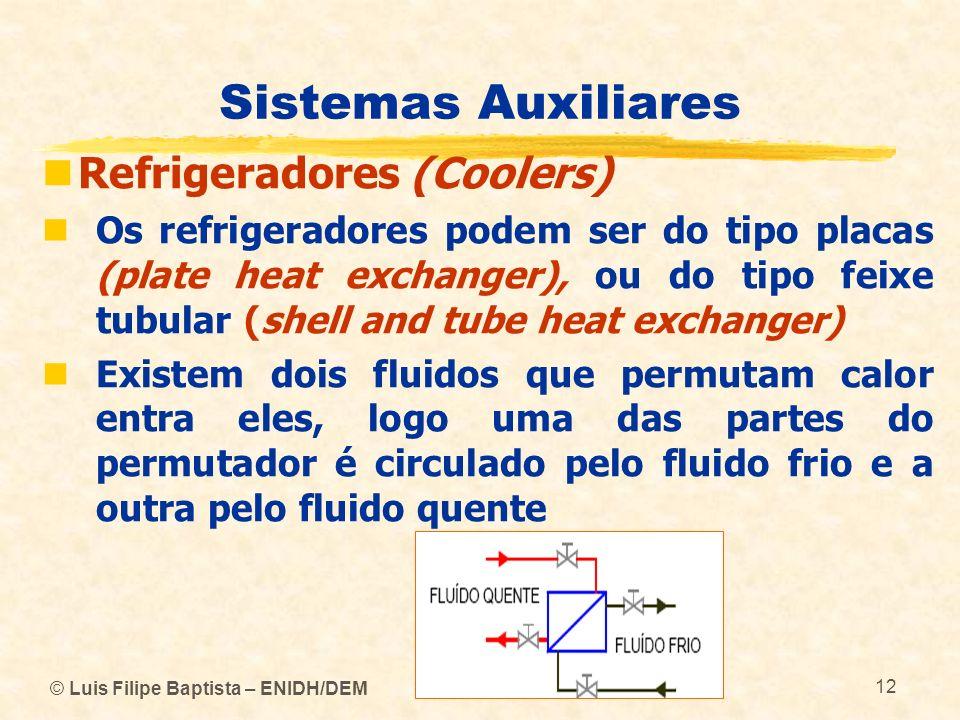 © Luis Filipe Baptista – ENIDH/DEM 12 Sistemas Auxiliares Refrigeradores (Coolers) Os refrigeradores podem ser do tipo placas (plate heat exchanger),
