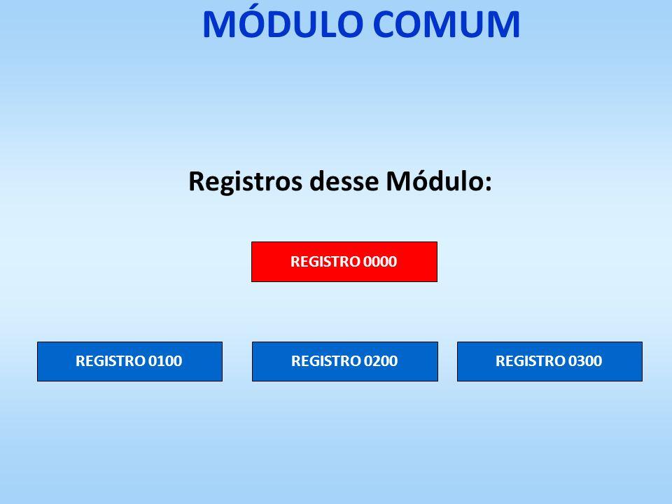 MÓDULO COMUM Registros desse Módulo: REGISTRO 0000 REGISTRO 0100REGISTRO 0200REGISTRO 0300