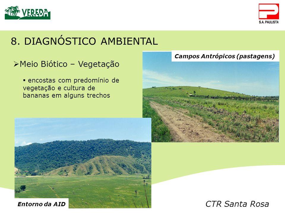 CTR Santa Rosa Campos Antrópicos (pastagens) Meio Biótico – Vegetação encostas com predomínio de vegetação e cultura de bananas em alguns trechos 8. D