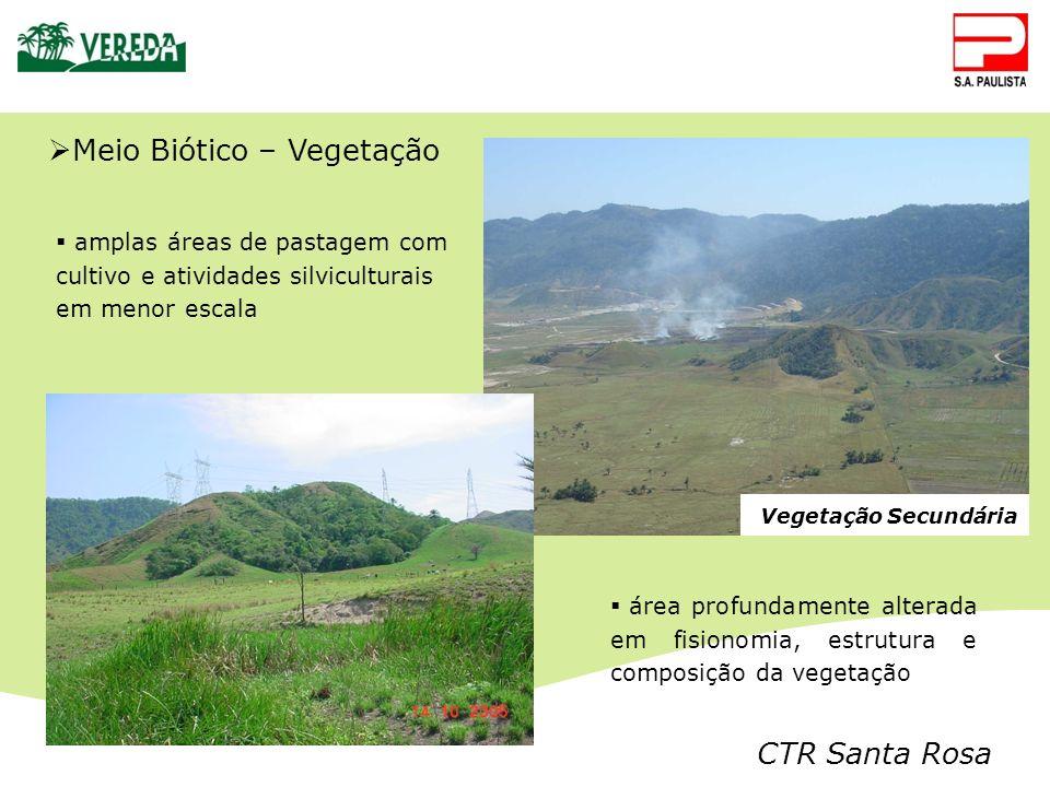CTR Santa Rosa Vegetação Secundária amplas áreas de pastagem com cultivo e atividades silviculturais em menor escala Meio Biótico – Vegetação área pro