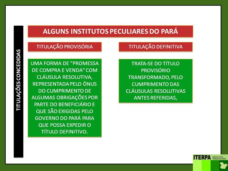 TITULAÇÕES CONCEDIDAS ALGUNS INSTITUTOS PECULIARES DO PARÁ TITULAÇÃO PROVISÓRIA UMA FORMA DE