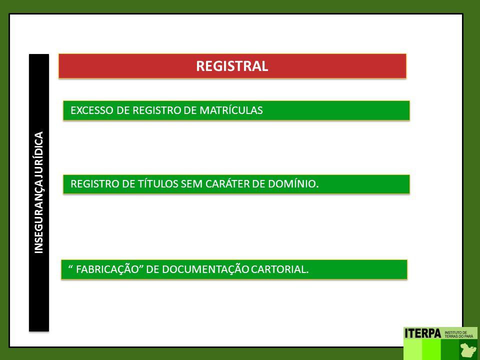 INSEGURANÇA JURÍDICA REGISTRAL EXCESSO DE REGISTRO DE MATRÍCULAS REGISTRO DE TÍTULOS SEM CARÁTER DE DOMÍNIO. FABRICAÇÃO DE DOCUMENTAÇÃO CARTORIAL.