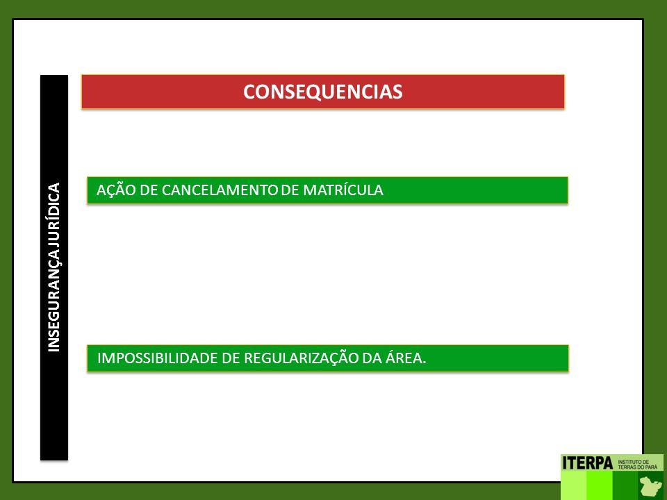 INSEGURANÇA JURÍDICA CONSEQUENCIAS AÇÃO DE CANCELAMENTO DE MATRÍCULA IMPOSSIBILIDADE DE REGULARIZAÇÃO DA ÁREA.