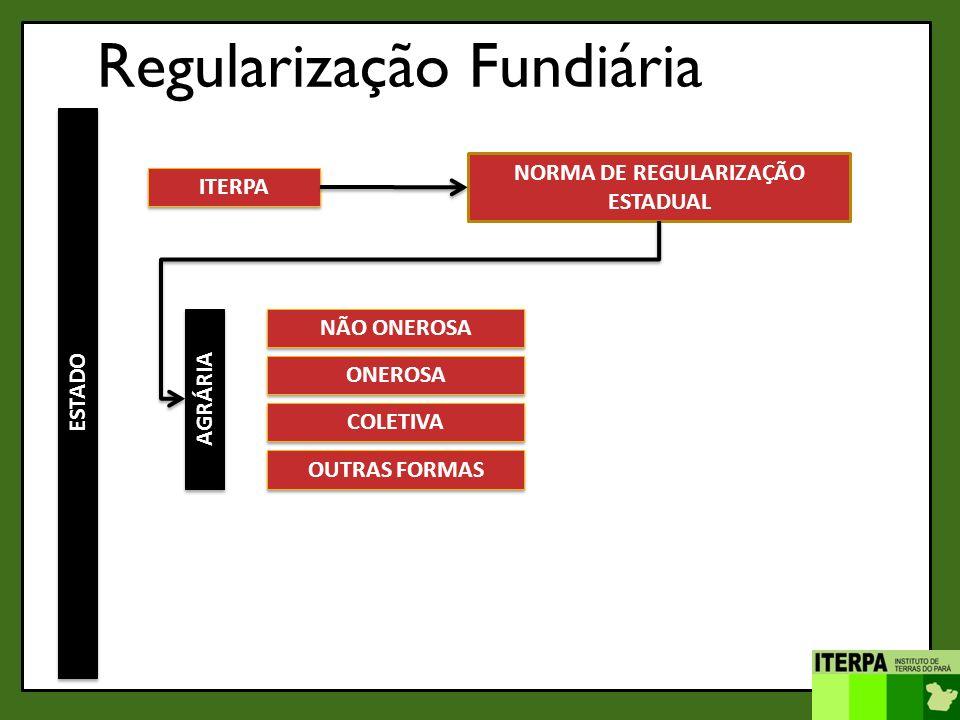 ITERPA NORMA DE REGULARIZAÇÃO ESTADUAL ESTADO AGRÁRIA NÃO ONEROSA ONEROSA COLETIVA OUTRAS FORMAS