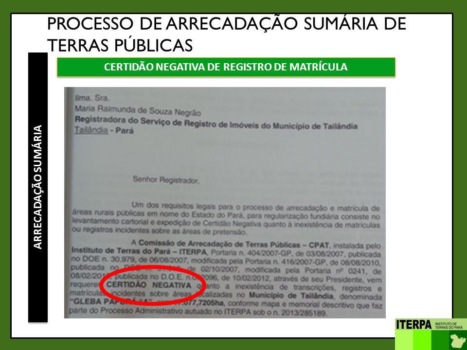PROCESSO DE ARRECADAÇÃO SUMÁRIA DE TERRAS PÚBLICAS ARRECADAÇÃO SUMÁRIA CERTIDÃO NEGATIVA DE REGISTRO DE MATRÍCULA