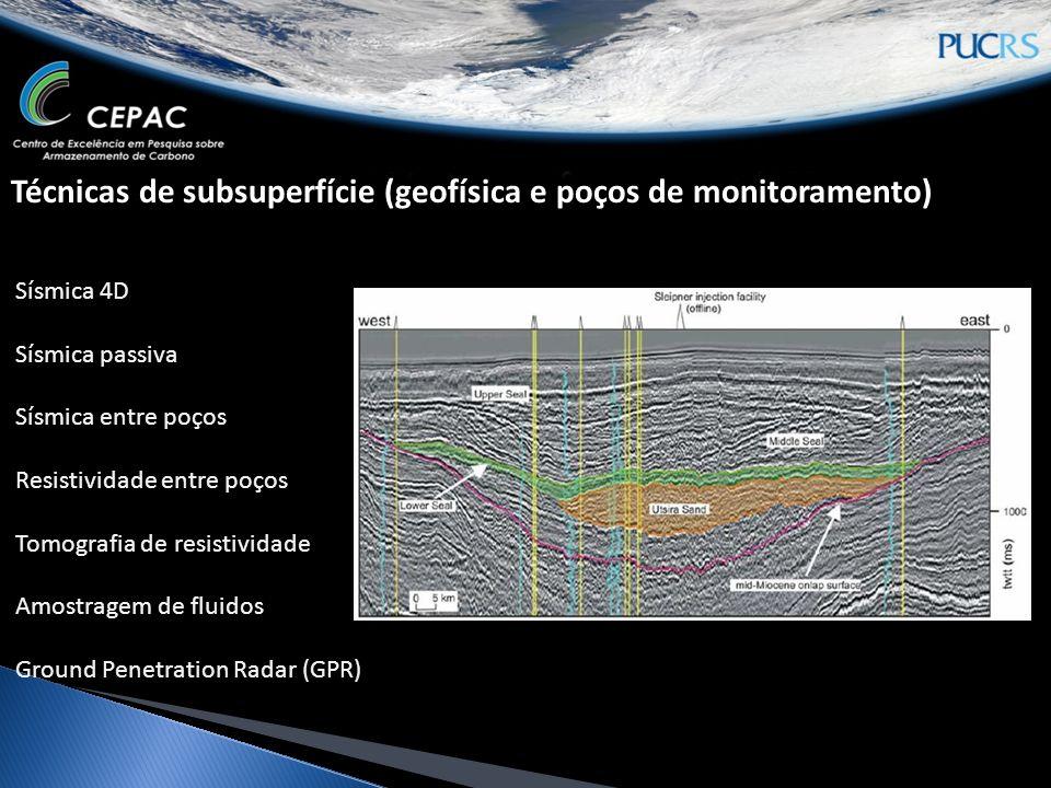 Técnicas de subsuperfície (geofísica e poços de monitoramento) Sísmica 4D Sísmica passiva Sísmica entre poços Resistividade entre poços Tomografia de resistividade Amostragem de fluidos Ground Penetration Radar (GPR)