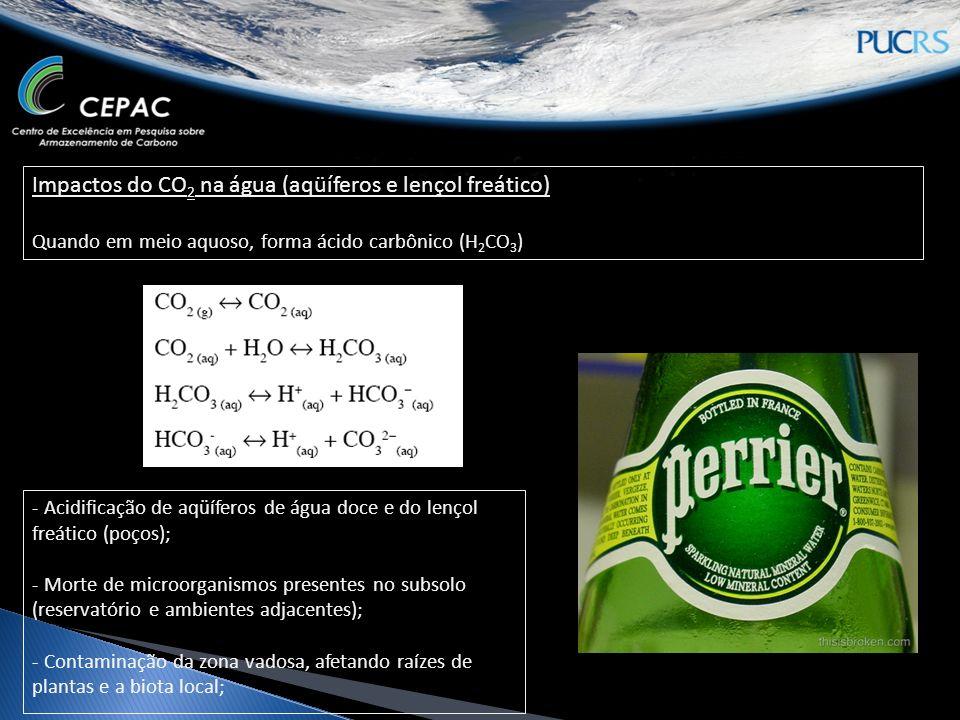 Impactos do CO 2 na água (aqüíferos e lençol freático) Quando em meio aquoso, forma ácido carbônico (H 2 CO 3 ) - Acidificação de aqüíferos de água doce e do lençol freático (poços); - Morte de microorganismos presentes no subsolo (reservatório e ambientes adjacentes); - Contaminação da zona vadosa, afetando raízes de plantas e a biota local;