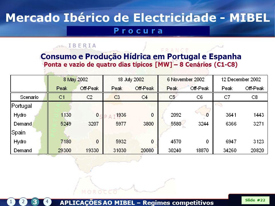 P O R T U G A L S P A I N I B E R I A F R A N C E M O R O C C O Mercado Ibérico de Electricidade - MIBEL Slide #22 P r o c u r a 12 3 4 APLICAÇÕES AO