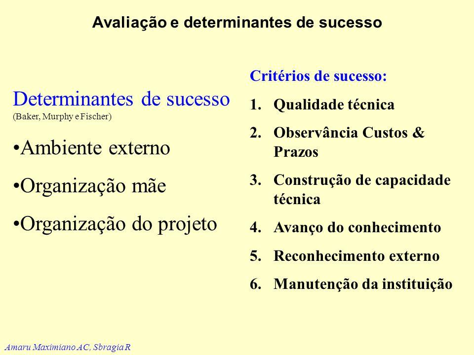 Avaliação e determinantes de sucesso Há que se distinguir: –Objetivos específicos do projeto –Atendimento a um dado planejamento (enunciado X tácito –