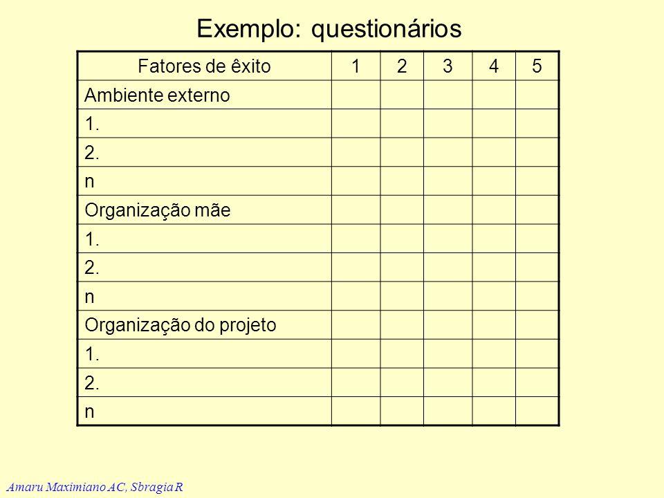 Avaliação e determinantes de sucesso Amaru Maximiano AC, Sbragia R Determinantes de sucesso (Baker, Murphy e Fischer) Ambiente externo Organização mãe