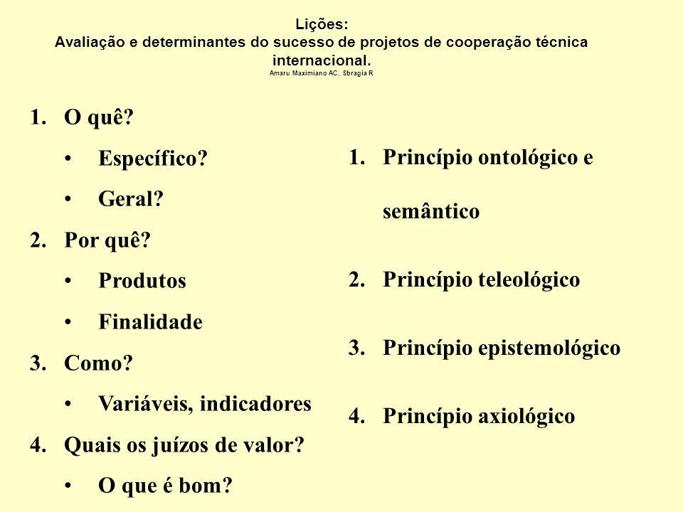 Concluindo um relatório de avaliação Amaru Maximiano AC, Sbragia R Equipe de avaliação: Executante Financiador Cliente / beneficiário Especialista Res