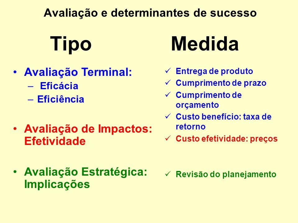 Avaliação Terminal: Eficácia, Eficiência Avaliação de Impactos: Efetividade –Internos Projeto, empresa –Externos Setor, sociedade Avaliação Estratégic