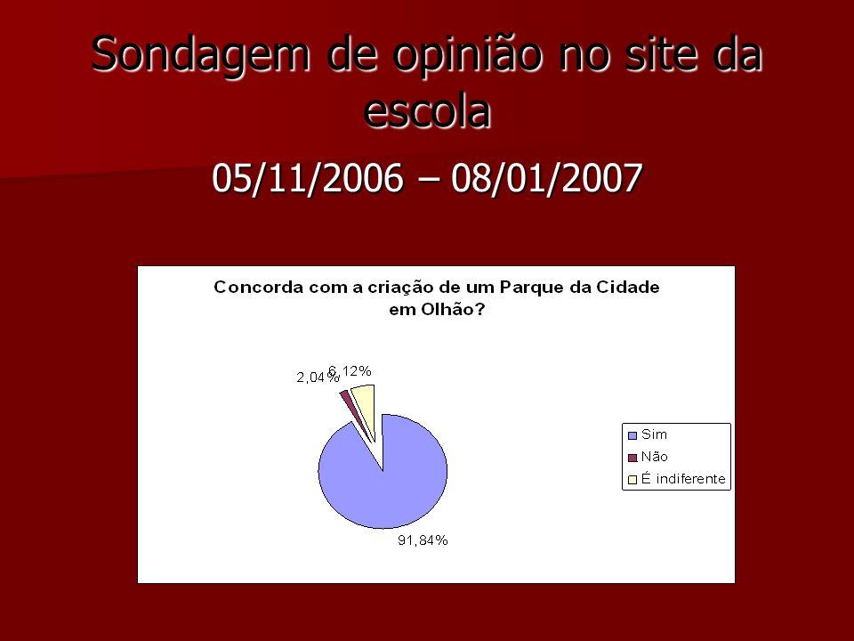 Sondagem de opinião no site da escola 05/11/2006 – 08/01/2007