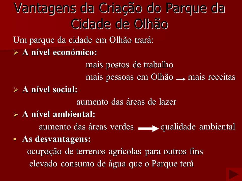 Vantagens da Criação do Parque da Cidade de Olhão Um parque da cidade em Olhão trará: A nível económico: A nível económico: mais postos de trabalho ma