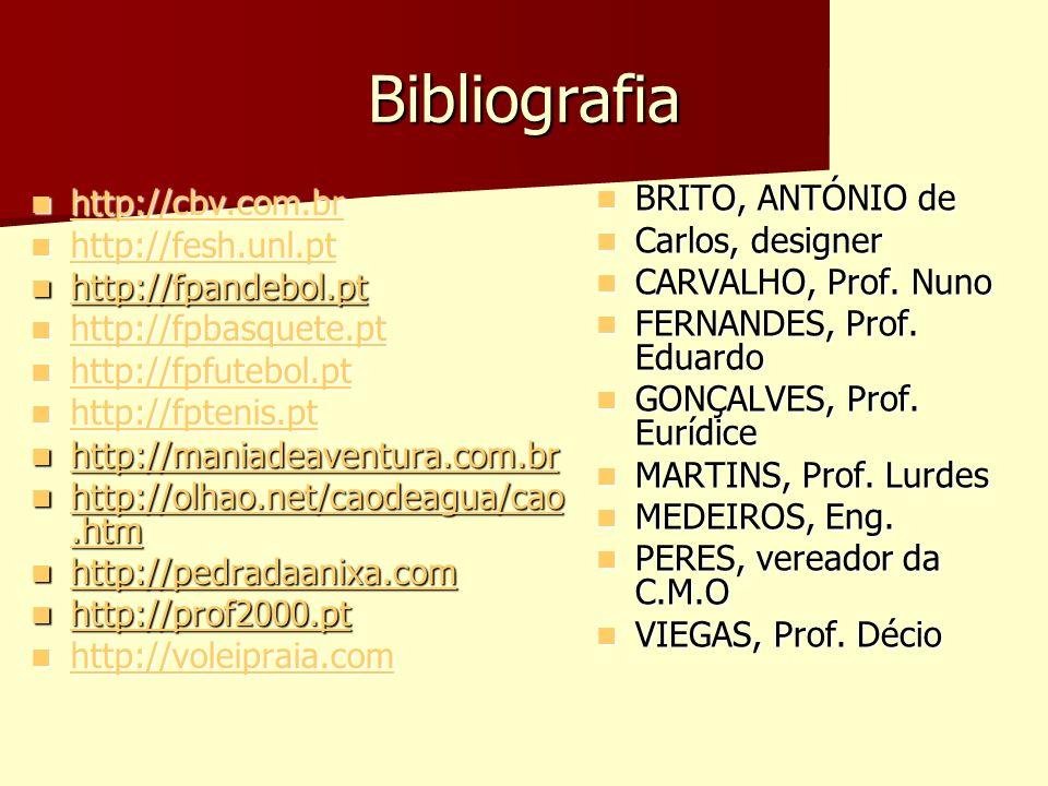 Bibliografia http://cbv.com.br http://cbv.com.br http://cbv.com.br http://fesh.unl.pt http://fesh.unl.pt http://fesh.unl.pt http://fpandebol.pt http:/