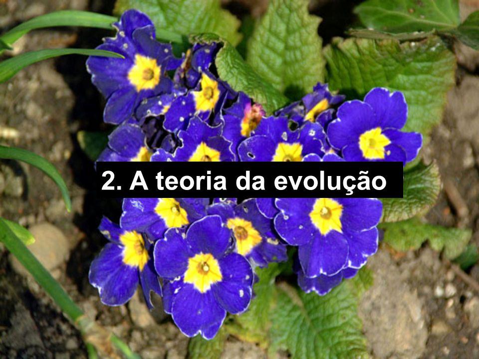 2. A teoria da evolução