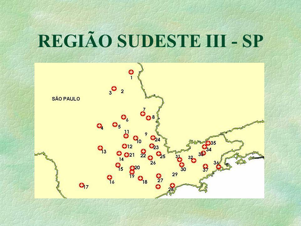 REGIÃO SUDESTE III - SP
