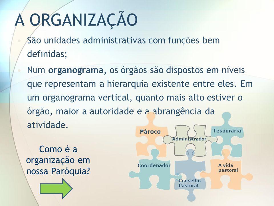 A ORGANIZAÇÃO São unidades administrativas com funções bem definidas; Num organograma, os órgãos são dispostos em níveis que representam a hierarquia