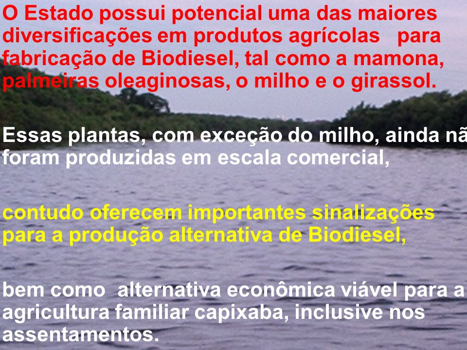 O Estado possui potencial uma das maiores diversificações em produtos agrícolas para fabricação de Biodiesel, tal como a mamona, palmeiras oleaginosas