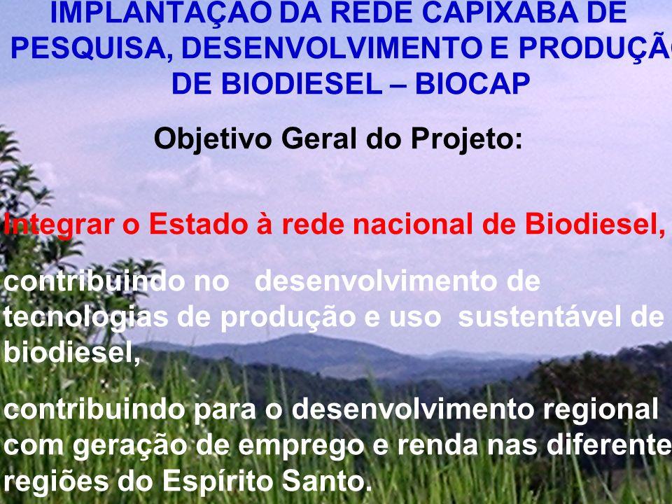 Objetivos específicos do Projeto : Implementar uma rede uma rede estadual de pesquisa Implantação e avaliação de genótipos com potencial oleífero (mamona, palmáceas oleaginosas, milho e soja) na produção de biodiesel.