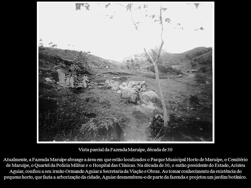 Atualmente, a Fazenda Maruípe abrange a área em que estão localizados o Parque Municipal Horto de Maruípe, o Cemitério de Maruípe, o Quartel da Políci