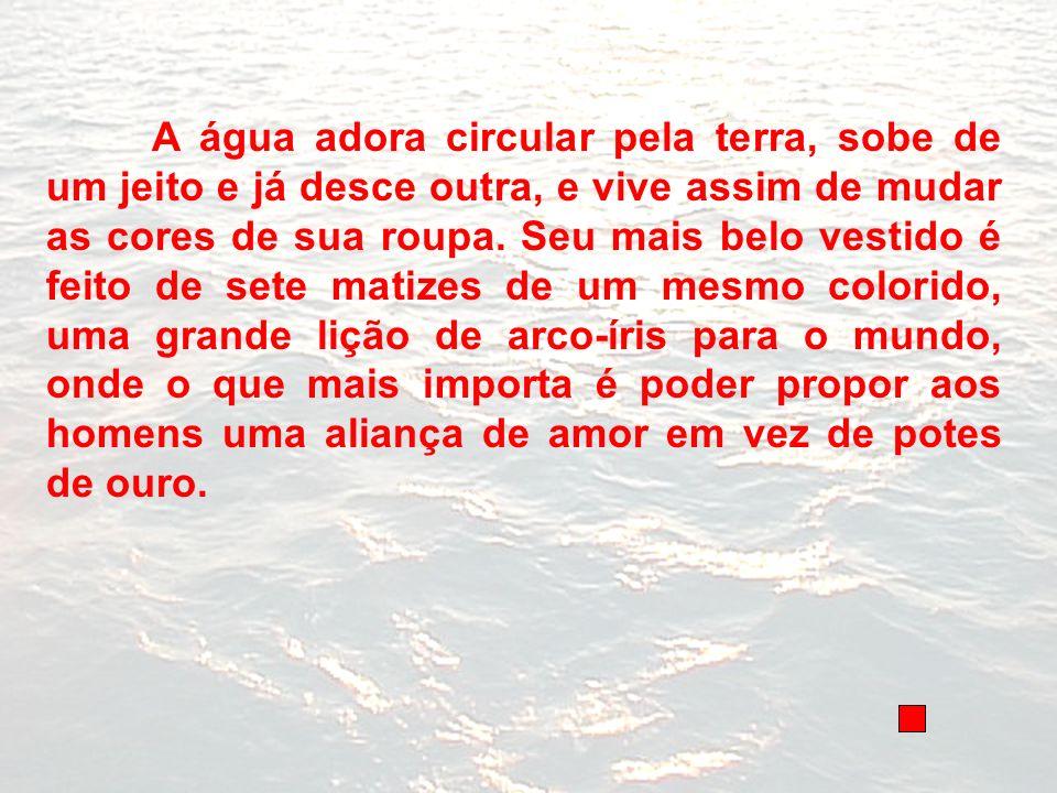 A água adora circular pela terra, sobe de um jeito e já desce outra, e vive assim de mudar as cores de sua roupa. Seu mais belo vestido é feito de set