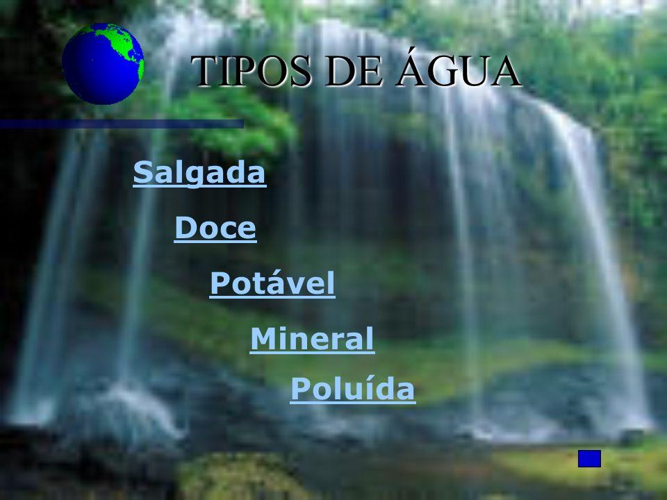 TIPOS DE ÁGUA Poluída Mineral Doce Salgada Potável