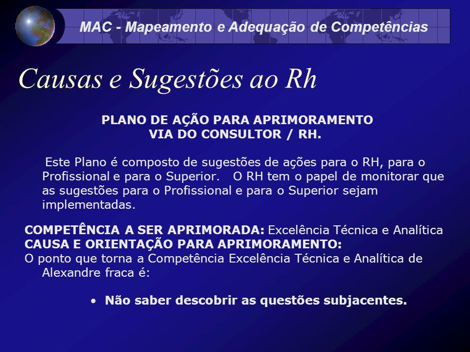 MAC - Mapeamento e Adequação de Competências Causas e Sugestões ao Rh PLANO DE AÇÃO PARA APRIMORAMENTO VIA DO CONSULTOR / RH.