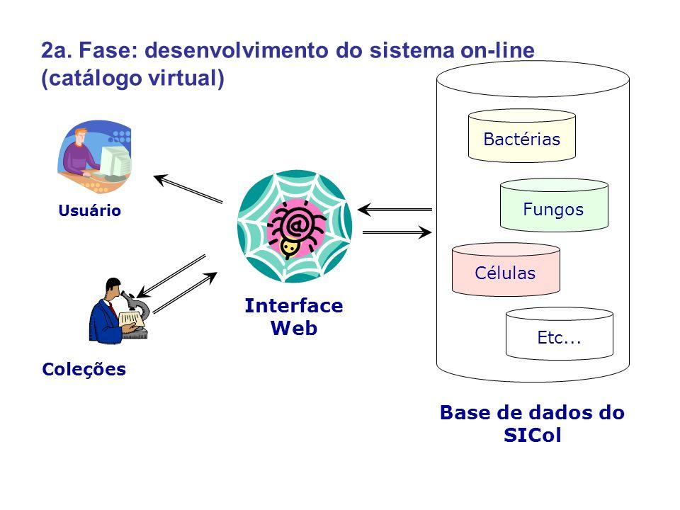 2a. Fase: desenvolvimento do sistema on-line (catálogo virtual) Interface Web Bactérias Fungos Células Etc... Base de dados do SICol Coleções Usuário