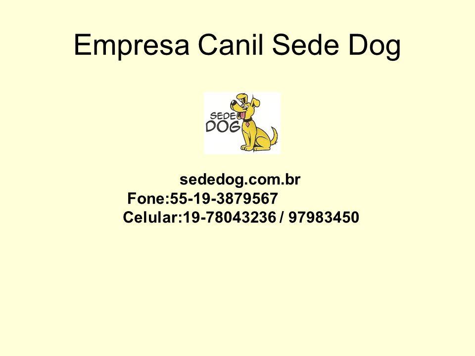 Empresa Canil Sede Dog sededog.com.br Fone:55-19-3879567 Celular:19-78043236 / 97983450