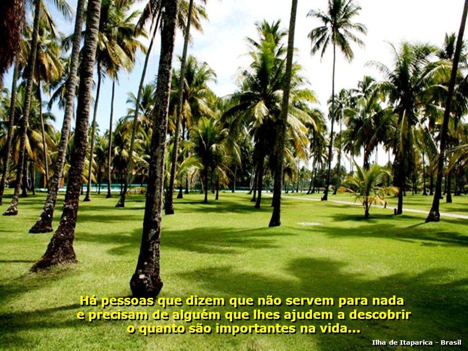Há pessoas que se sentem de fora e precisam de alguém que lhes mostrem o caminho do convívio... Ilha de Itaparica - Brasil