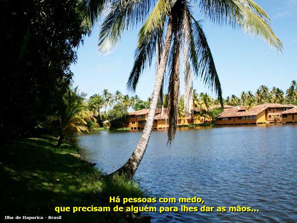 Há pessoas sozinhas, que precisam de alguém para brincar... Há pessoas sozinhas, que precisam de alguém para brincar... Ilha de Itaparica - Brasil