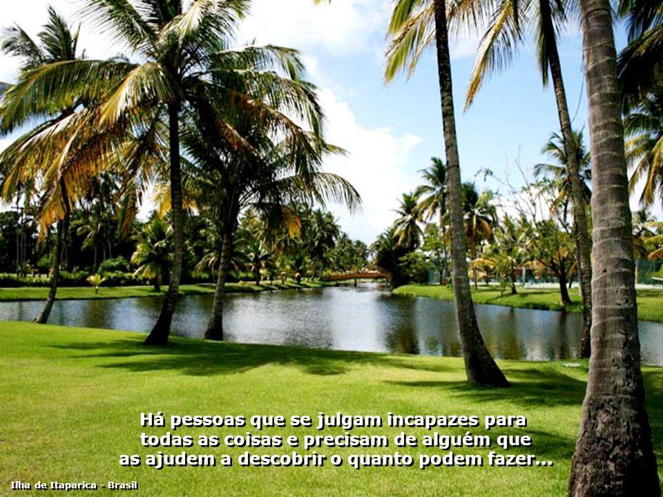 Há pessoas habilidosas, que precisam de alguém para ajudar a descobrir a melhor maneira de usarem a sua habilidade... Ilha de Itaparica - Brasil